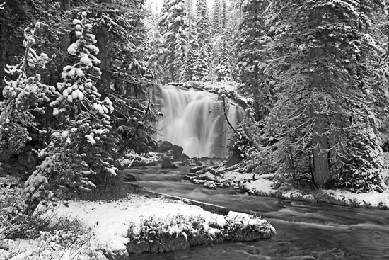 black and white Waterfall photograph Goose Creek Falls, Cascade Mountains, Oregon