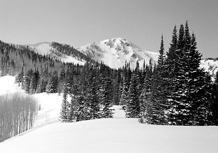 Jupiter Peak Puma Bowl East Face Park City Utah Black and White Photograph