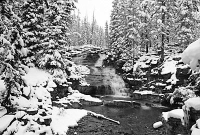 Utah Uinta Mountains, Provo River Falls Black and White Photograph