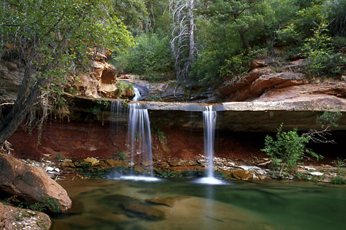Photographer David Whitten North Creek Zion National Park, Utah