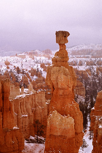Thor's Hammer, Bryce Canyon National Park photograph, Utah