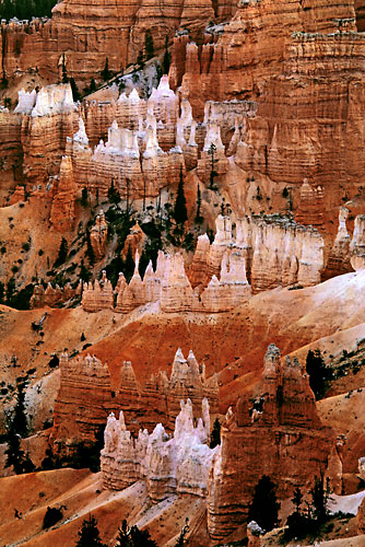 Bryce Canyon National Park photograph, Utah Photographer David Whitten