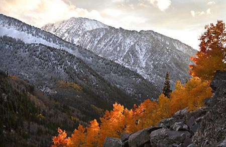 Photographs Wasatch Mountains Utah By David Whitten Alta