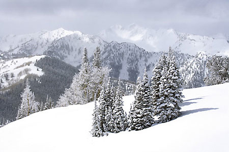Winter Snow Wasatch Mountains Park City photograph Utah
