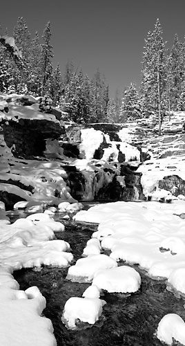 Upper Provo River Uinta Mountains Utah Black and White Photograph
