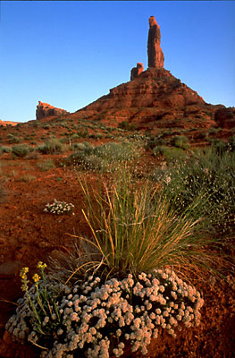 Valley of the Gods State Park, Utah