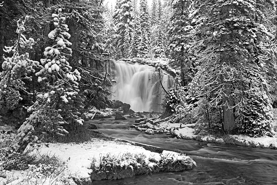 Fall Creek Falls, Cascade Mountains, Oregon - Black and White Photography