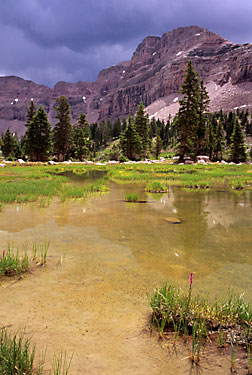 Dead Horse Lake, High Uinta Wilderness, Wasatch National Forest, Utah