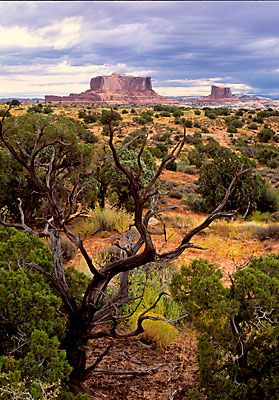 Monitor and Merrimack, Moab, Utah, BLM public land