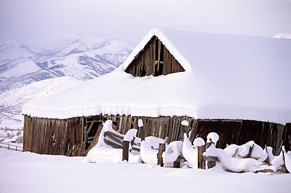 Winter Barn, Heber, Utah