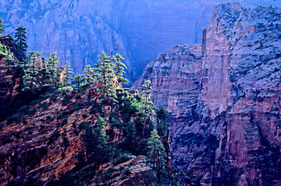 Zion Canyon, Zion National Park photo, Utah, Photograph