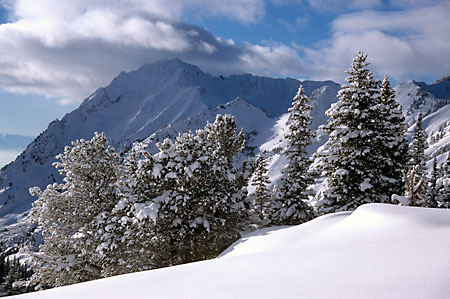 Wasatch Mountains photograph Utah Backcountry and Alta Superior Peak Grizzly Gulch