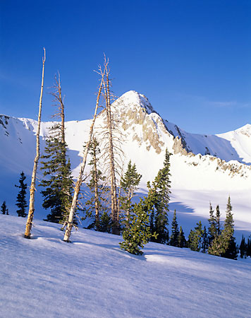 The Pfeifferhorn - Wasatch Mountains Utah - Backcountry skiing