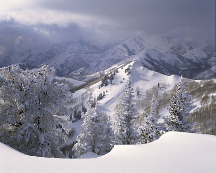 Big Cottonwood Canyon Mt. Raymond and Gobbler's Knob Wasatch Mountains Utah