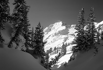 Superior Peak, Grizzly Gulch, Wasatch Mountains Utah Black and White Photograph