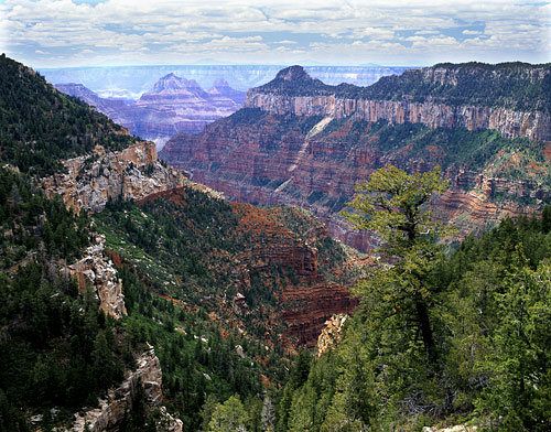 North Rim Grand Canyon National Park Arizona - Grand Canyon photo
