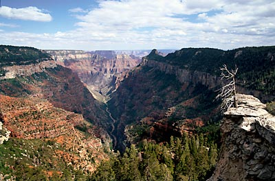 North Rim Grand Canyon National Park Arizona