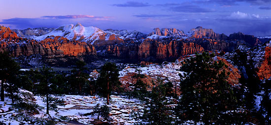 Zion National Park photo by Utah photographer David Whitten