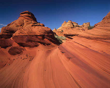 Coyote Buttes Vermillion Cliffs Wilderness Utah photograph by David Whitten