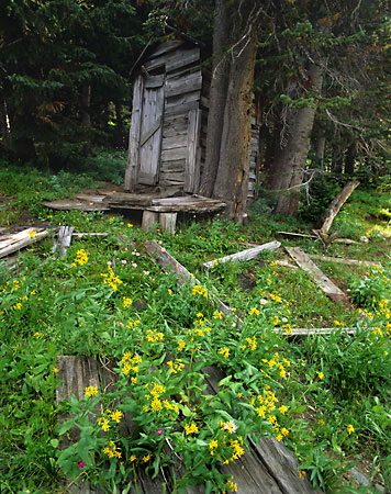 Outhouse Beartooth Mountains Montana