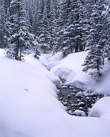 Red Pine Creek Snowy Stream Wasatch Mountains, Utah