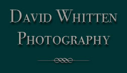 David Whitten Photography